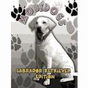 Mobidogs Labrador