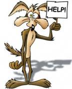 Pera kojot